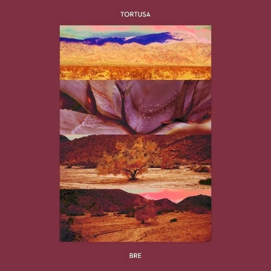 tortusa _ Bre _cover