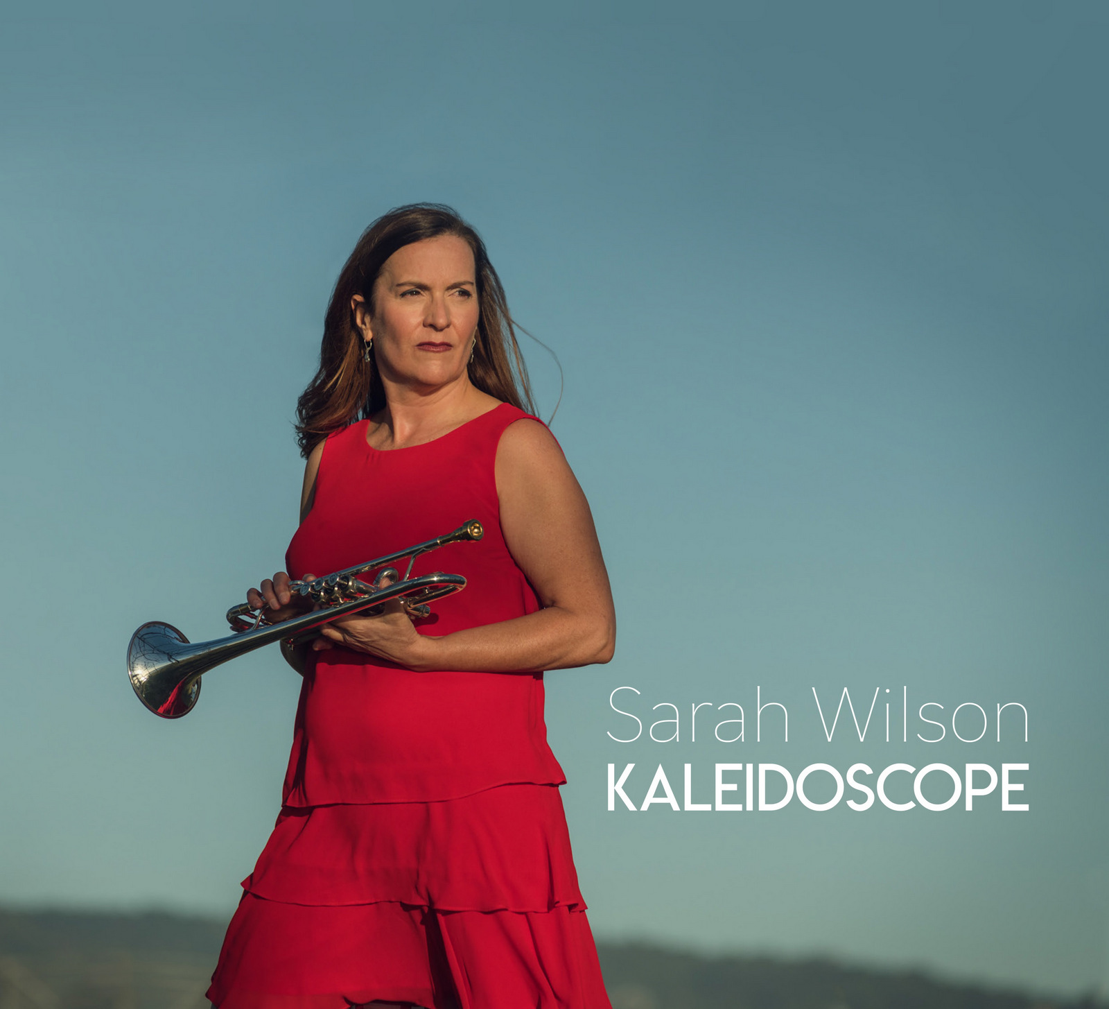 Sara WIlson Kaleidoscope _ cover 1600pix