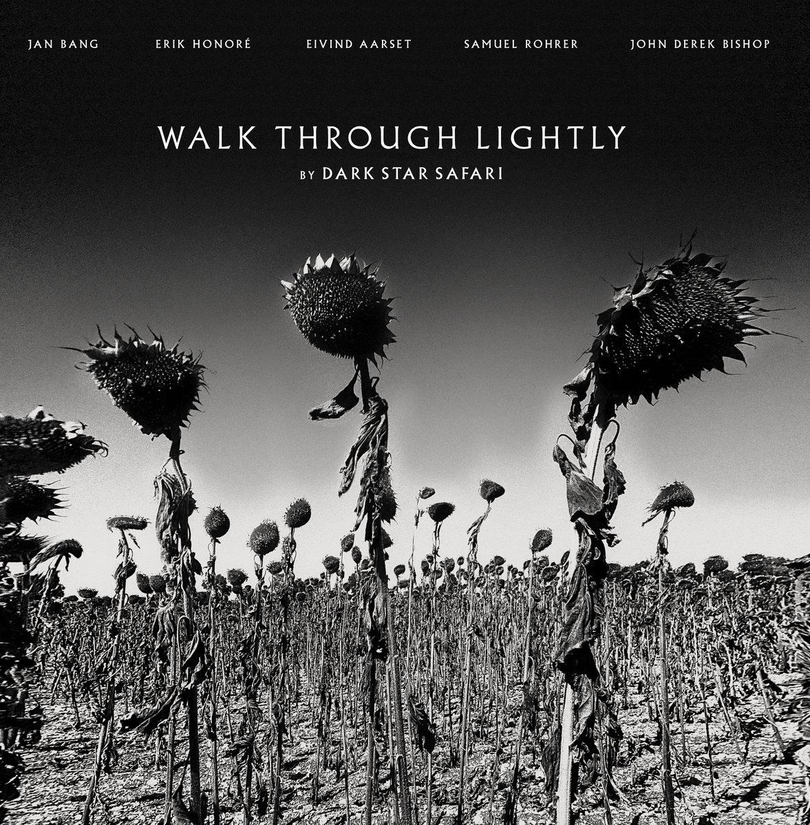 Dark Star Safari - Walk Through Lightly _ cover